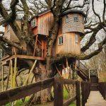 Къща на дърво с всички екстри в нея